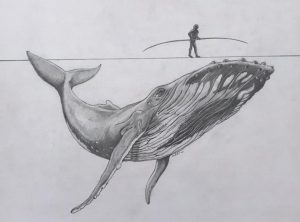Wal unter Hochseil